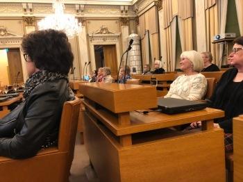 Yleisötilaisuus kaupunginvaltuustossa